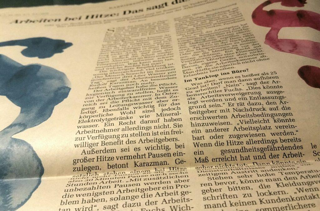 Zeitungsartikel DerStandard